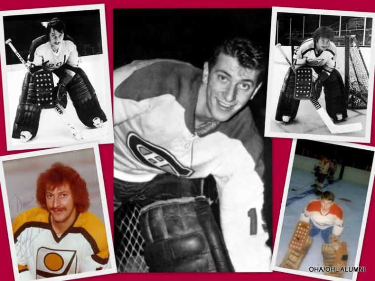 ted colage of hockey pics in one
